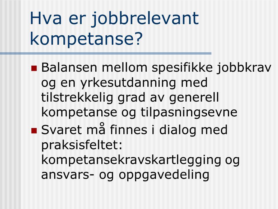 Hva er jobbrelevant kompetanse.