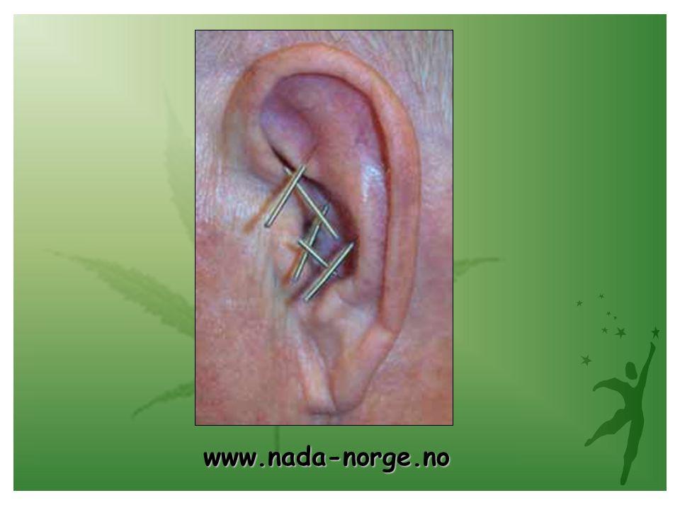 www.nada-norge.no www.nada-norge.no