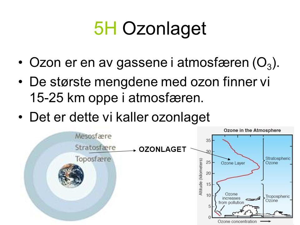 5H Ozonlaget •Ozon er en av gassene i atmosfæren (O 3 ).