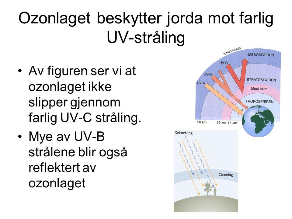 Ozonlaget beskytter jorda mot farlig UV-stråling •Av figuren ser vi at ozonlaget ikke slipper gjennom farlig UV-C stråling.