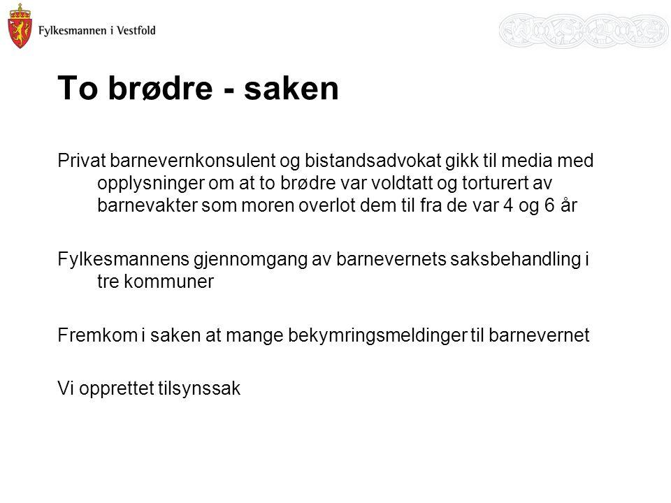 To brødre - saken Privat barnevernkonsulent og bistandsadvokat gikk til media med opplysninger om at to brødre var voldtatt og torturert av barnevakte