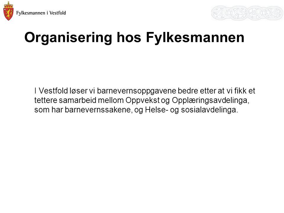 Organisering hos Fylkesmannen I Vestfold løser vi barnevernsoppgavene bedre etter at vi fikk et tettere samarbeid mellom Oppvekst og Opplæringsavdelin