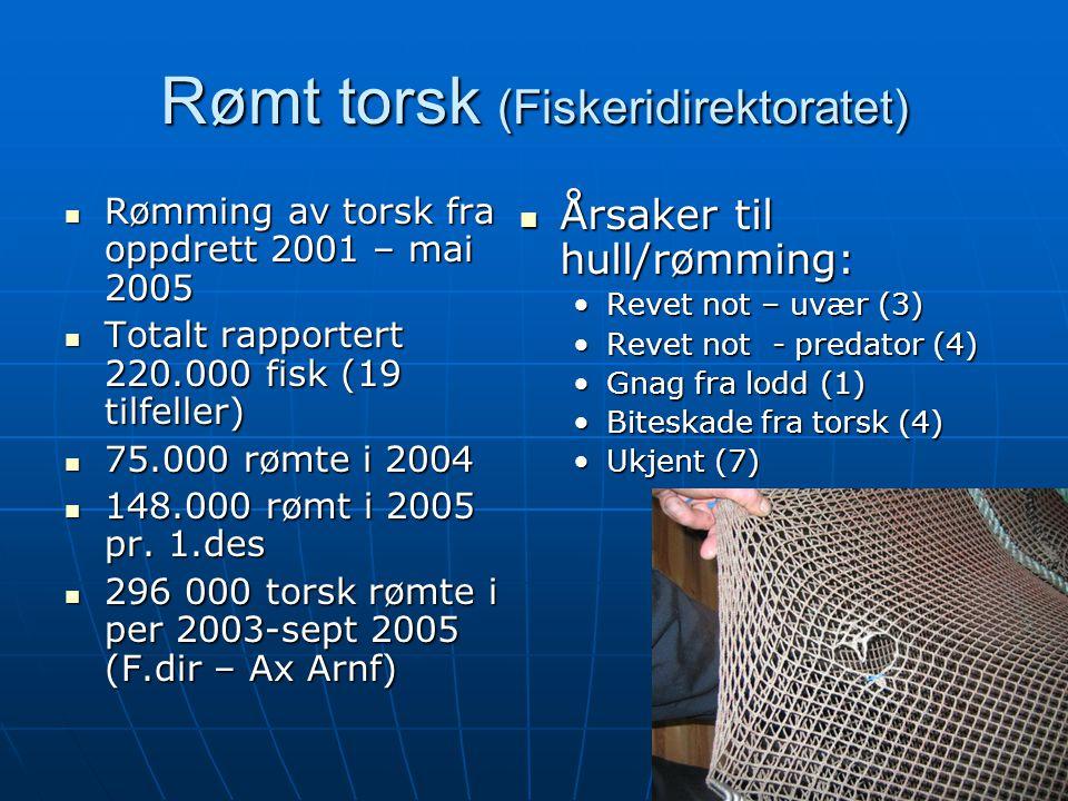 16 Rømt torsk (Fiskeridirektoratet)  Rømming av torsk fra oppdrett 2001 – mai 2005  Totalt rapportert 220.000 fisk (19 tilfeller)  75.000 rømte i 2