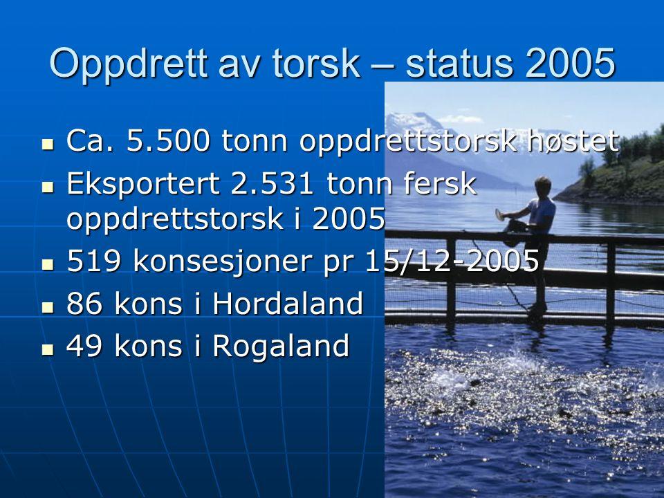 4 Oppdrett av torsk – status 2005  Ca. 5.500 tonn oppdrettstorsk høstet  Eksportert 2.531 tonn fersk oppdrettstorsk i 2005  519 konsesjoner pr 15/1