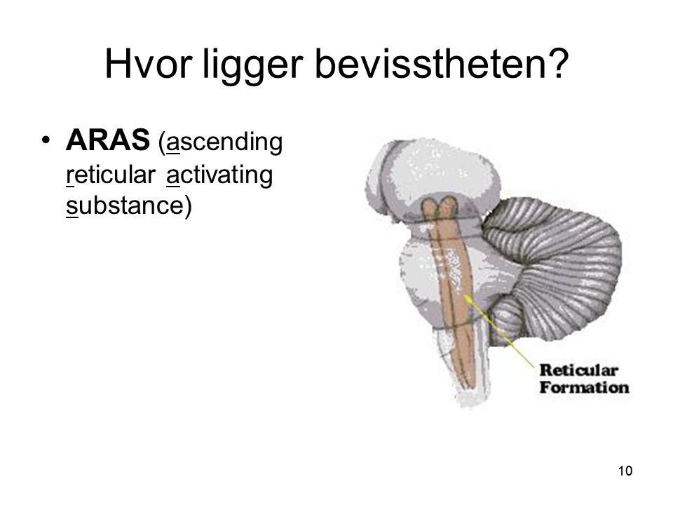 10 Hvor ligger bevisstheten? •ARAS (ascending reticular activating substance)