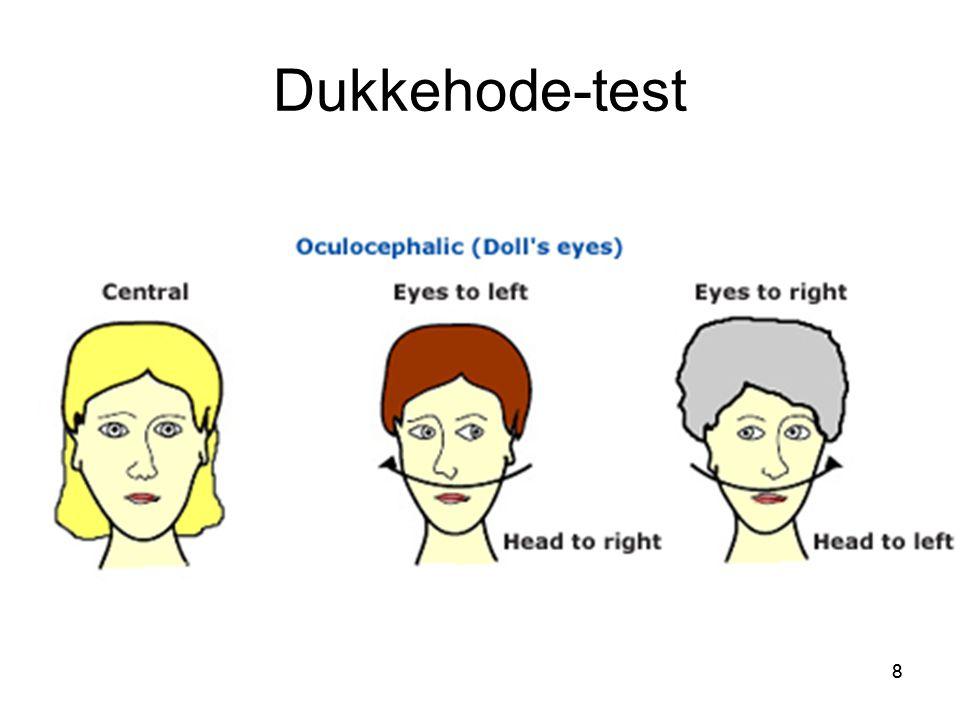 88 Dukkehode-test