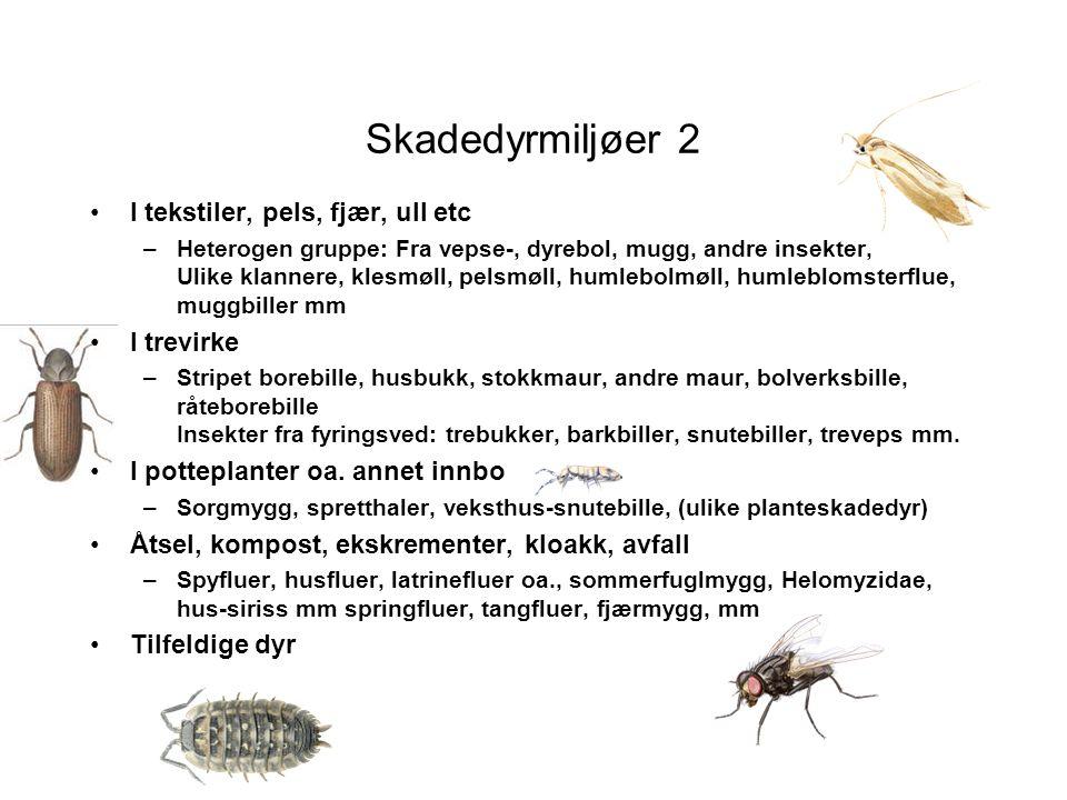 Skadedyrmiljøer 2 •I tekstiler, pels, fjær, ull etc –Heterogen gruppe: Fra vepse-, dyrebol, mugg, andre insekter, Ulike klannere, klesmøll, pelsmøll,