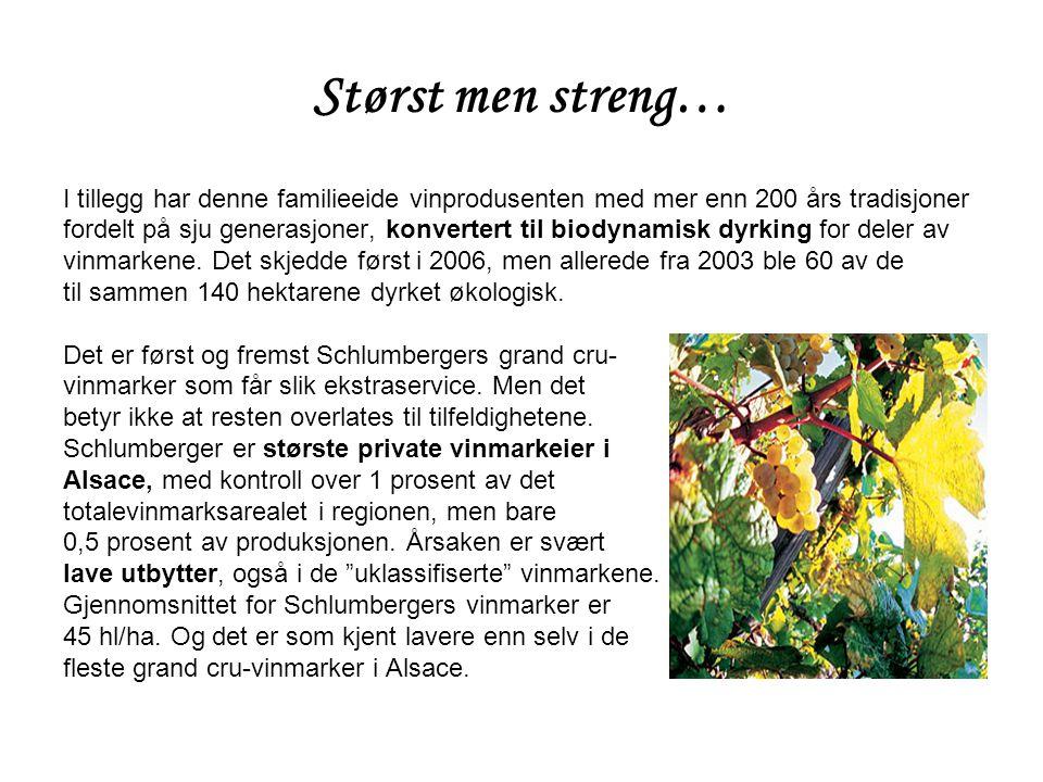 Størst men streng… I tillegg har denne familieeide vinprodusenten med mer enn 200 års tradisjoner fordelt på sju generasjoner, konvertert til biodynamisk dyrking for deler av vinmarkene.