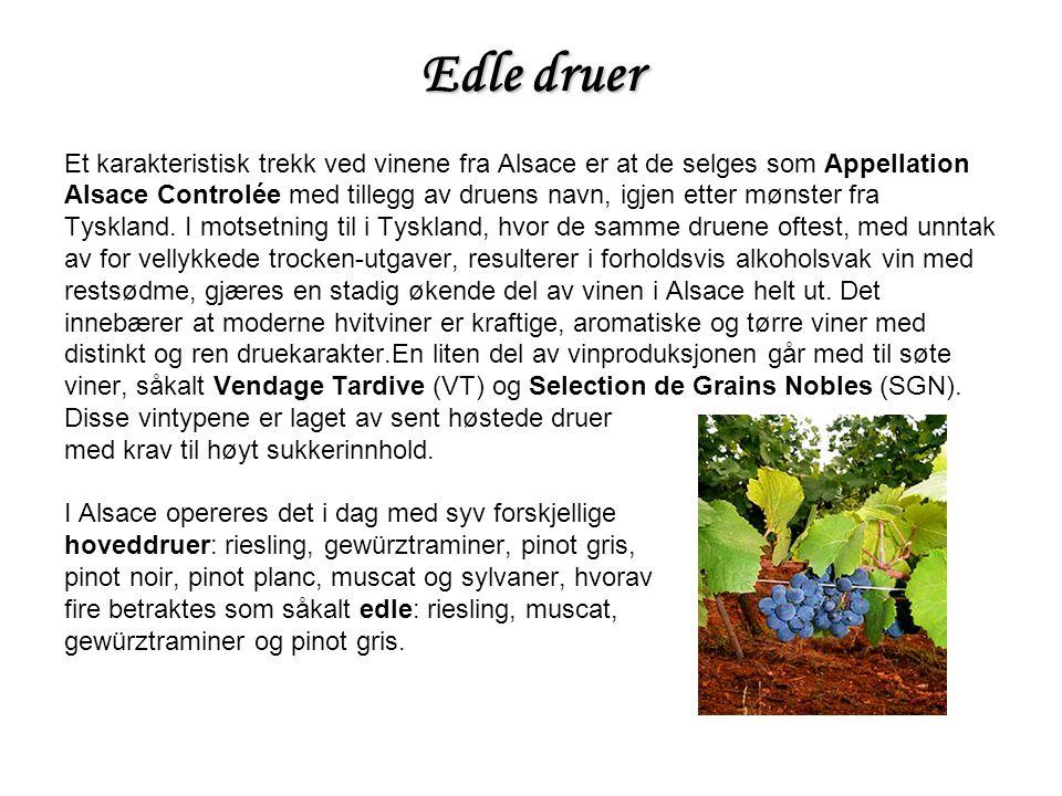 Edle druer Et karakteristisk trekk ved vinene fra Alsace er at de selges som Appellation Alsace Controlée med tillegg av druens navn, igjen etter mønster fra Tyskland.