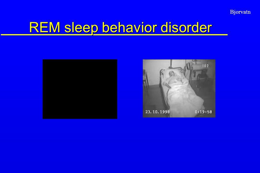 Bjorvatn REM sleep behavior disorder