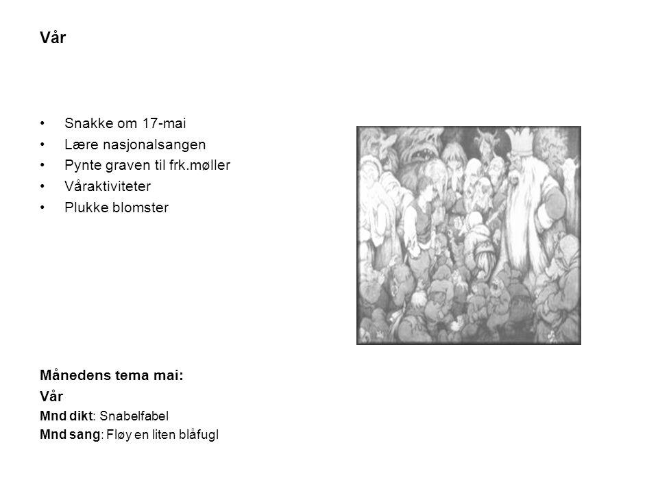 Vår •Snakke om 17-mai •Lære nasjonalsangen •Pynte graven til frk.møller •Våraktiviteter •Plukke blomster Månedens tema mai: Vår Mnd dikt: Snabelfabel