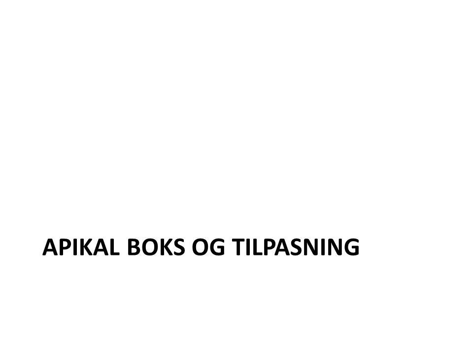 APIKAL BOKS OG TILPASNING