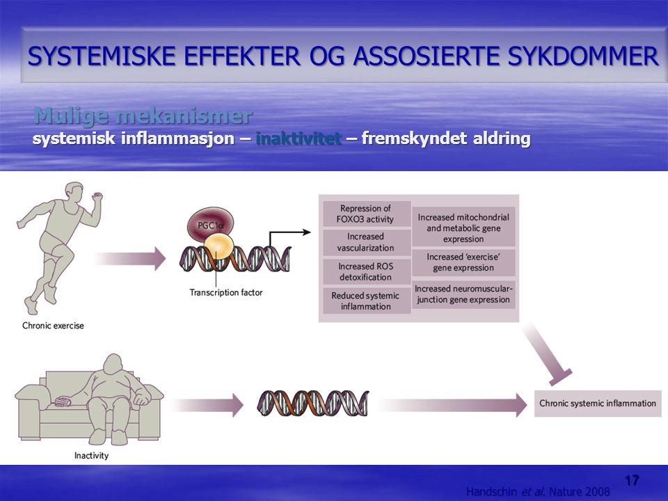 17 SYSTEMISKE EFFEKTER OG ASSOSIERTE SYKDOMMER Mulige mekanismer systemisk inflammasjon – inaktivitet – fremskyndet aldring Handschin et al. Nature 20