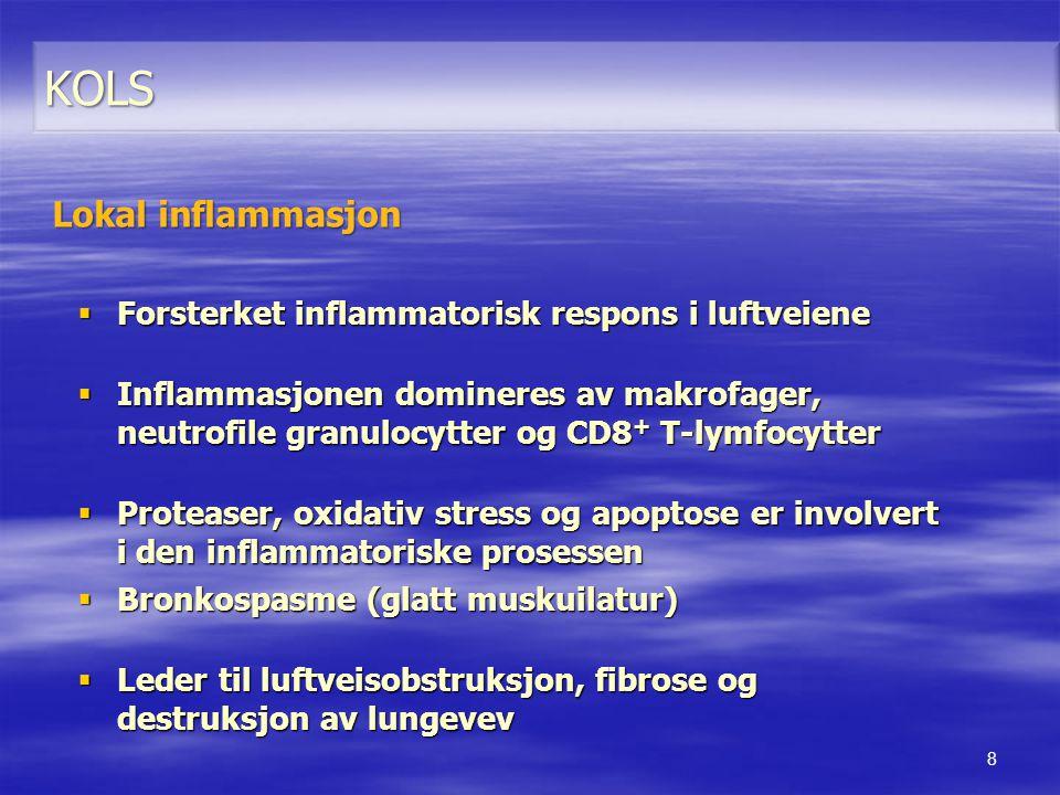  Forsterket inflammatorisk respons i luftveiene  Inflammasjonen domineres av makrofager, neutrofile granulocytter og CD8 + T-lymfocytter  Proteaser