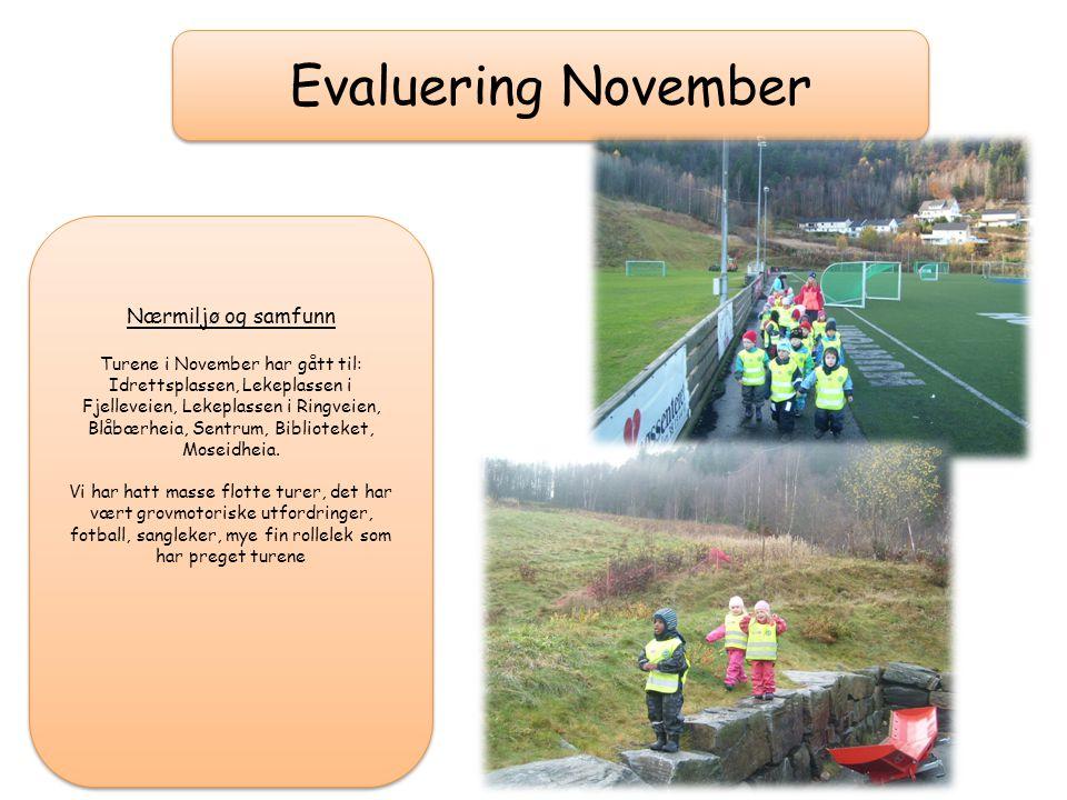 Evaluering November Nærmiljø og samfunn Turene i November har gått til: Idrettsplassen, Lekeplassen i Fjelleveien, Lekeplassen i Ringveien, Blåbærheia, Sentrum, Biblioteket, Moseidheia.