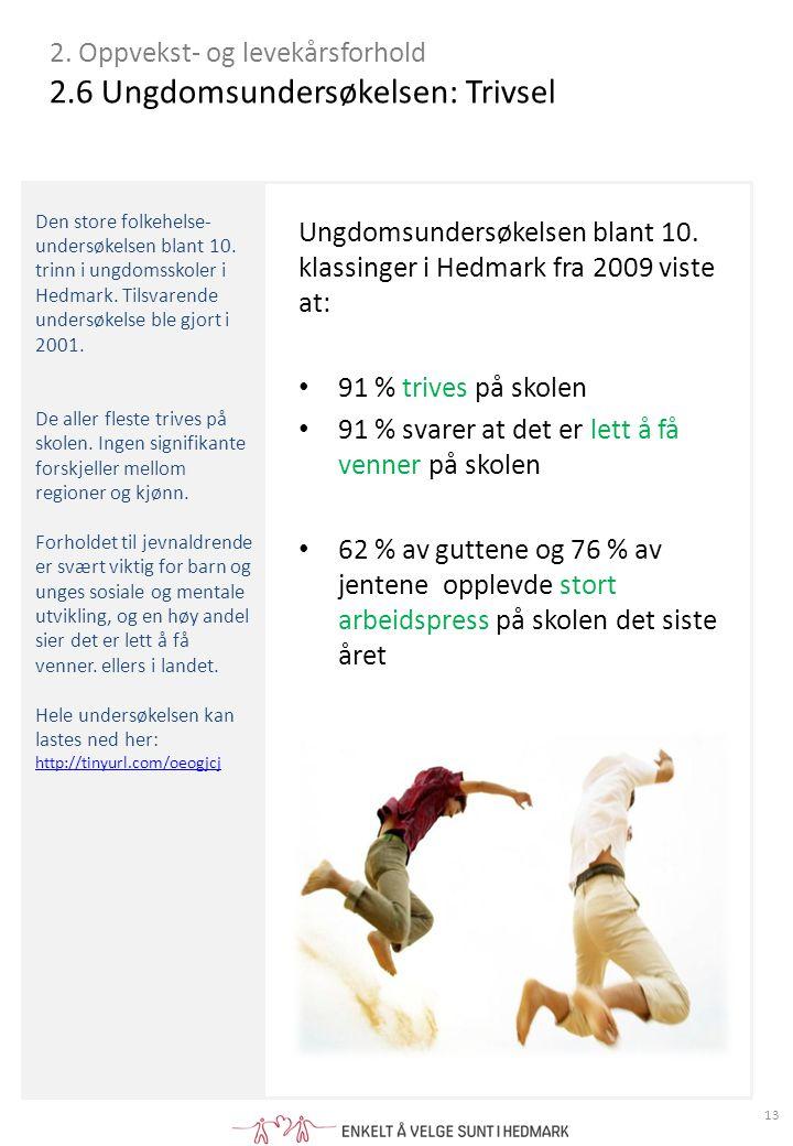 Den store folkehelse- undersøkelsen blant 10.trinn i ungdomsskoler i Hedmark.