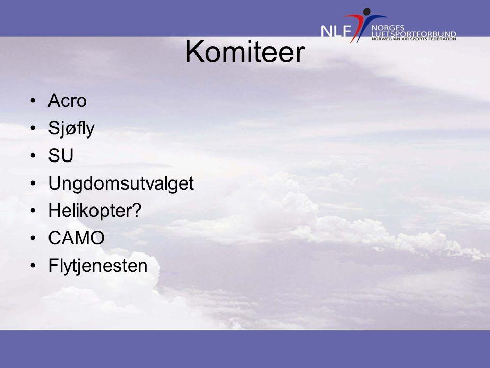 Komiteer •Acro •Sjøfly •SU •Ungdomsutvalget •Helikopter? •CAMO •Flytjenesten
