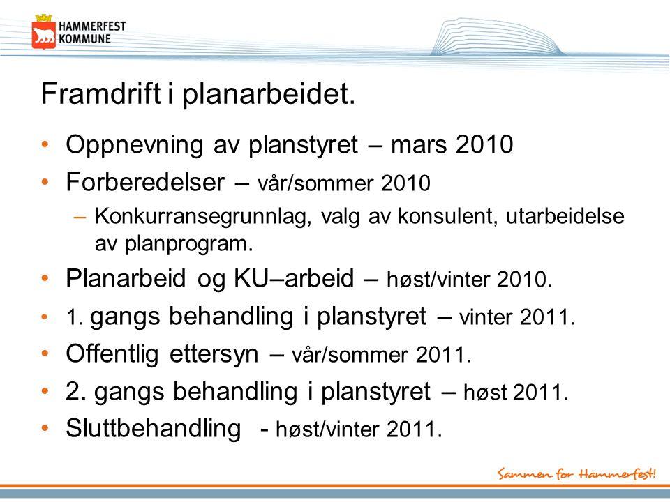 Framdrift i planarbeidet. •Oppnevning av planstyret – mars 2010 •Forberedelser – vår/sommer 2010 –Konkurransegrunnlag, valg av konsulent, utarbeidelse