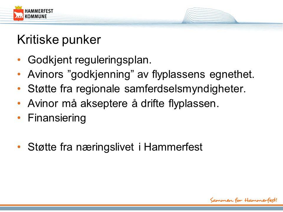 Kritiske punker •Godkjent reguleringsplan.•Avinors godkjenning av flyplassens egnethet.