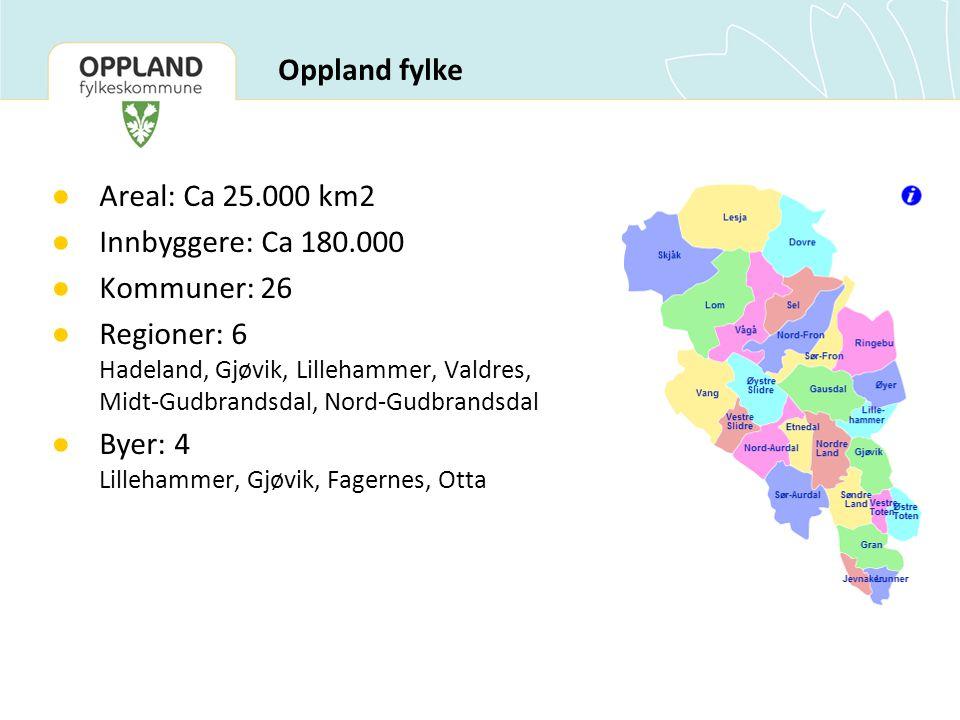 Oppland fylke ● Areal: Ca 25.000 km2 ● Innbyggere: Ca 180.000 ● Kommuner: 26 ● Regioner: 6 Hadeland, Gjøvik, Lillehammer, Valdres, Midt-Gudbrandsdal, Nord-Gudbrandsdal ● Byer: 4 Lillehammer, Gjøvik, Fagernes, Otta
