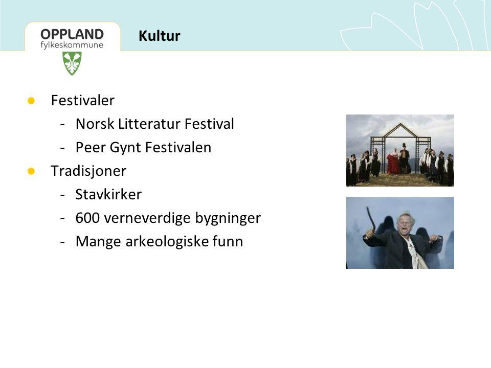 ● Festivaler - Norsk Litteratur Festival -Peer Gynt Festivalen ● Tradisjoner -Stavkirker -600 verneverdige bygninger -Mange arkeologiske funn Kultur