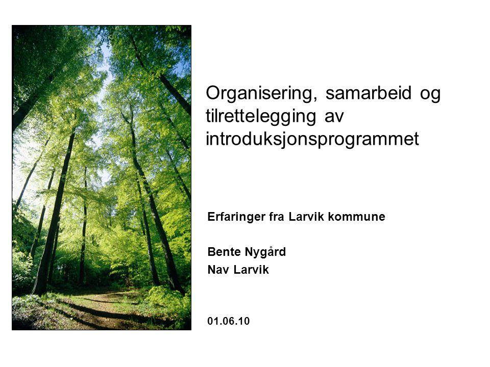 Organisering, samarbeid og tilrettelegging av introduksjonsprogrammet Erfaringer fra Larvik kommune Bente Nygård Nav Larvik 01.06.10