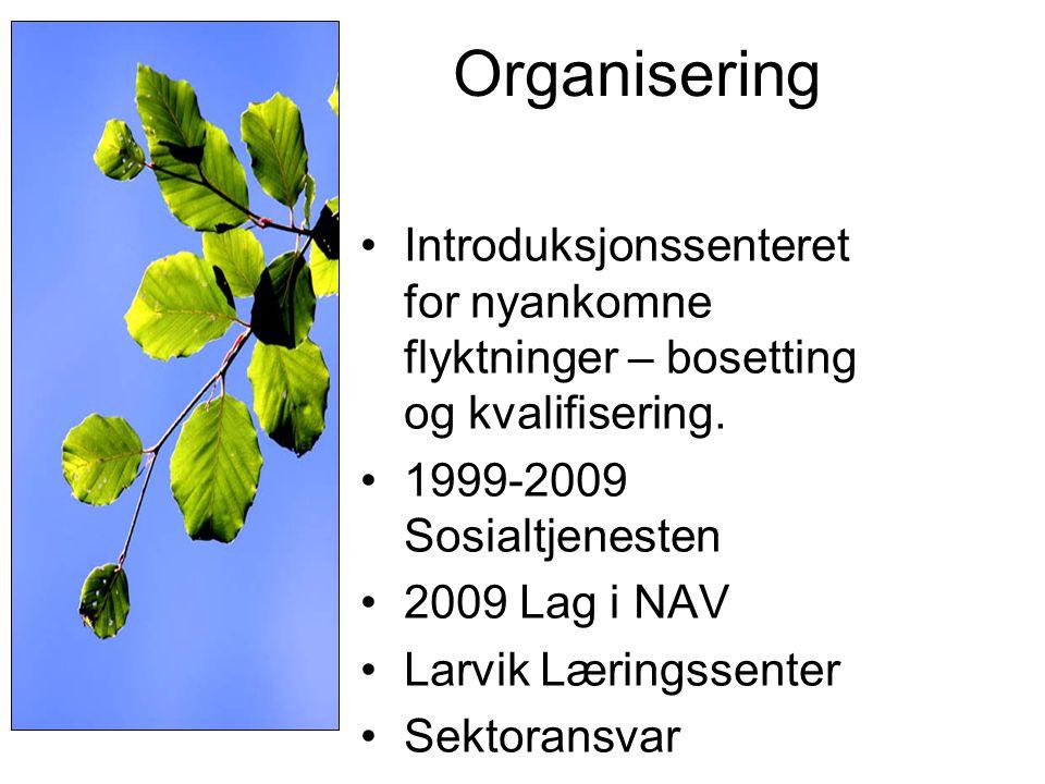 Organisering •Introduksjonssenteret for nyankomne flyktninger – bosetting og kvalifisering. •1999-2009 Sosialtjenesten •2009 Lag i NAV •Larvik Lærings