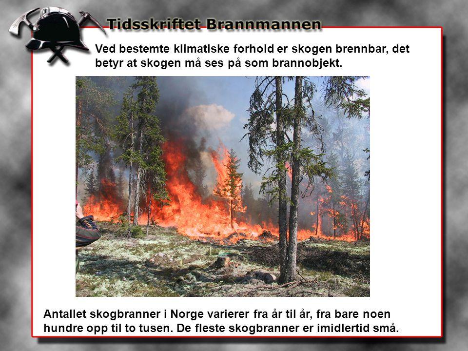 Ved bestemte klimatiske forhold er skogen brennbar, det betyr at skogen må ses på som brannobjekt. Antallet skogbranner i Norge varierer fra år til år