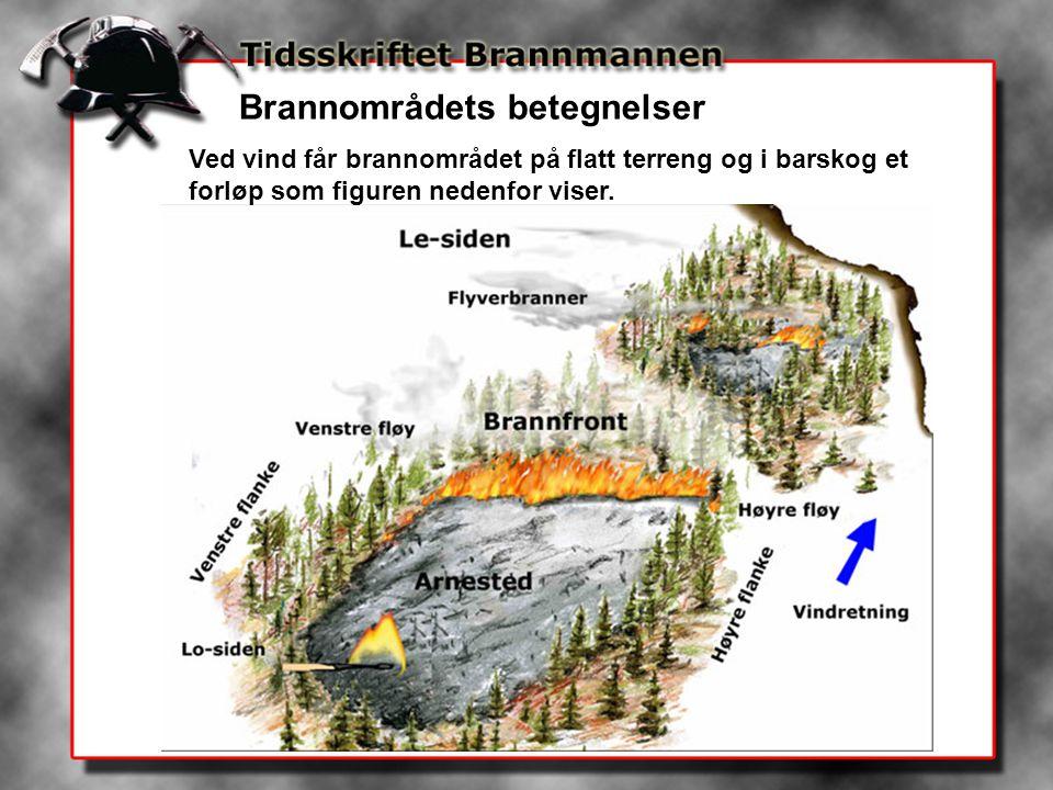 Brannområdets betegnelser Ved vind får brannområdet på flatt terreng og i barskog et forløp som figuren nedenfor viser.