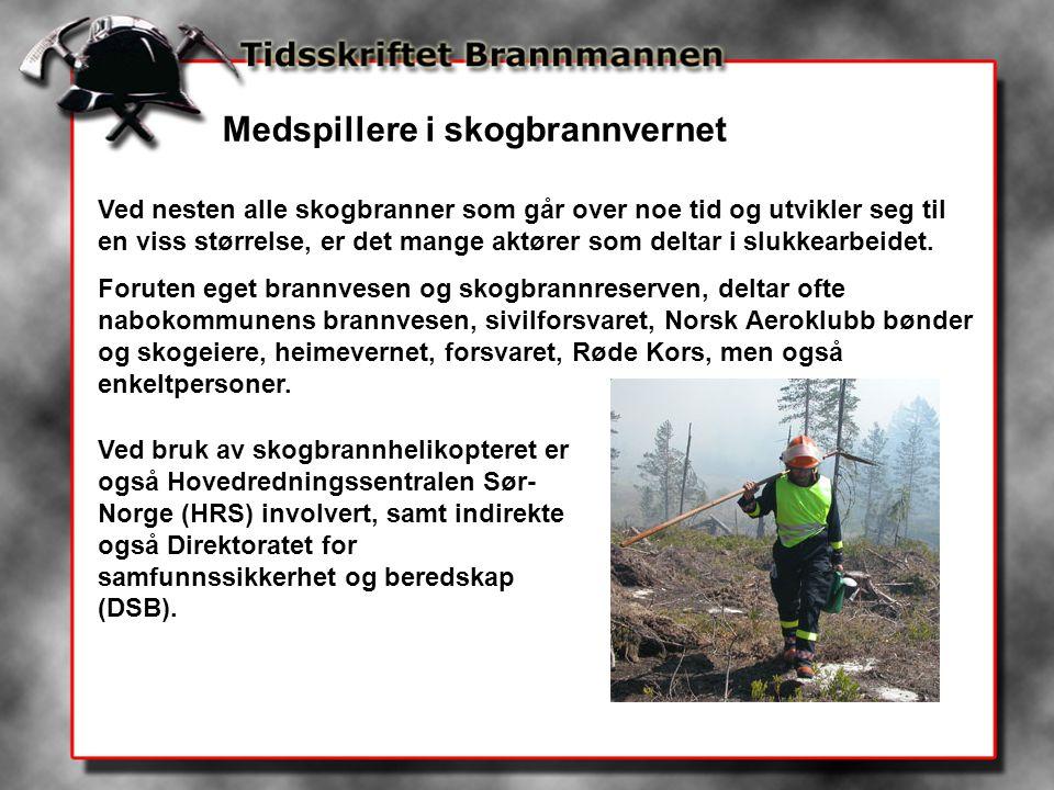 Medspillere i skogbrannvernet Ved nesten alle skogbranner som går over noe tid og utvikler seg til en viss størrelse, er det mange aktører som deltar