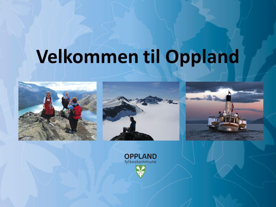 Mulighetenes Oppland Oppland fylke ● Areal: Ca.25.000 km2 ● Innbyggere: Ca.