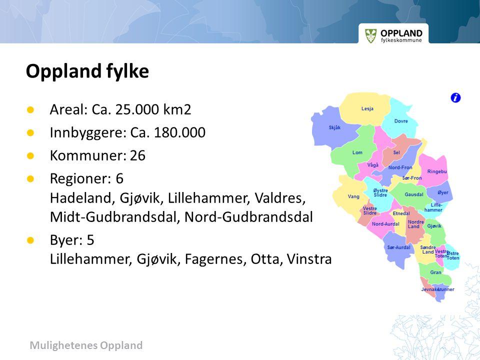 Mulighetenes Oppland Oppland fylke ● Areal: Ca. 25.000 km2 ● Innbyggere: Ca. 180.000 ● Kommuner: 26 ● Regioner: 6 Hadeland, Gjøvik, Lillehammer, Valdr