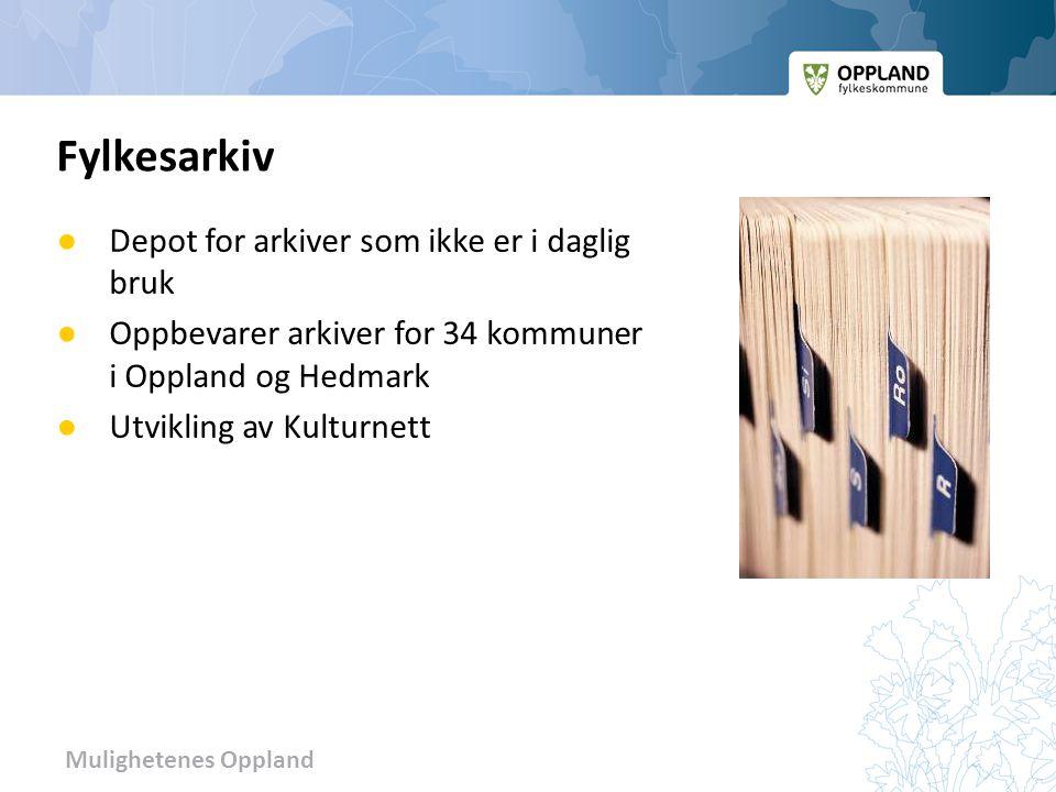 Mulighetenes Oppland ● Depot for arkiver som ikke er i daglig bruk ● Oppbevarer arkiver for 34 kommuner i Oppland og Hedmark ● Utvikling av Kulturnett