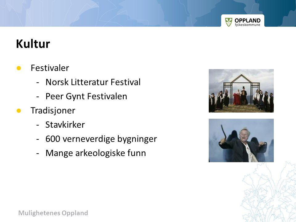 Mulighetenes Oppland ● Festivaler - Norsk Litteratur Festival -Peer Gynt Festivalen ● Tradisjoner -Stavkirker -600 verneverdige bygninger -Mange arkeo