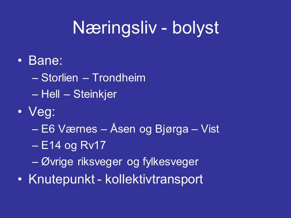 Næringsliv - bolyst •Bane: –Storlien – Trondheim –Hell – Steinkjer •Veg: –E6 Værnes – Åsen og Bjørga – Vist –E14 og Rv17 –Øvrige riksveger og fylkesveger •Knutepunkt - kollektivtransport