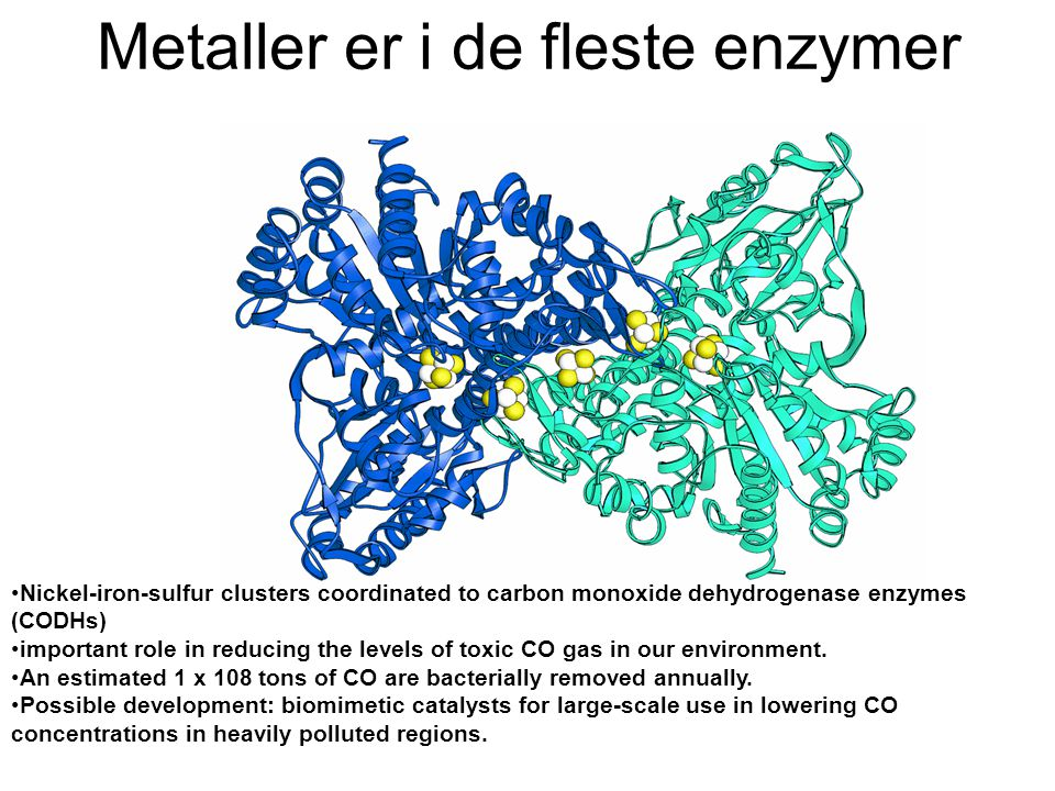 Metaller er i de fleste enzymer •Nickel-iron-sulfur clusters coordinated to carbon monoxide dehydrogenase enzymes (CODHs) •important role in reducing