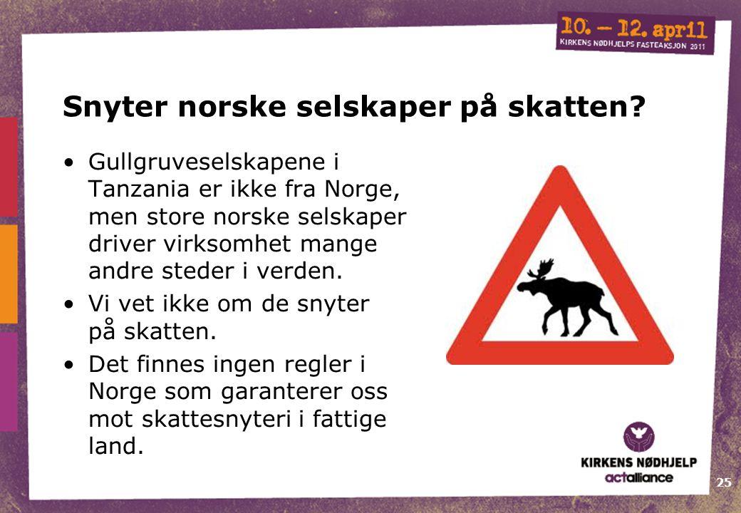 25 Snyter norske selskaper på skatten.