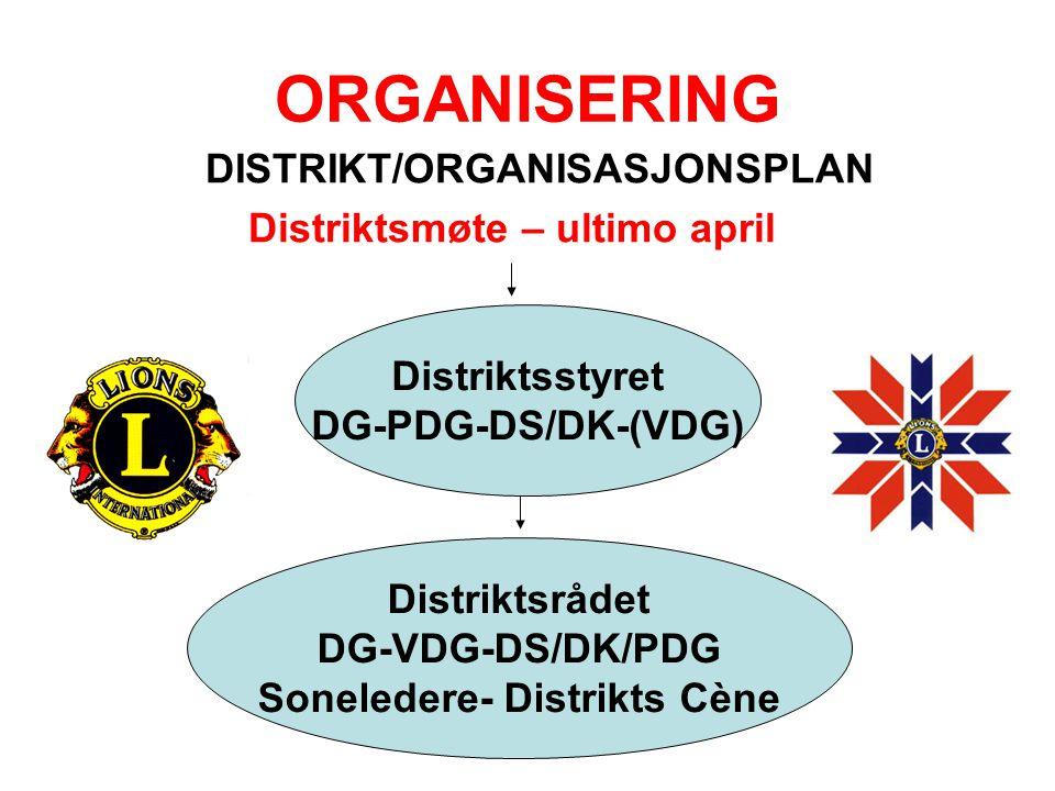ORGANISERING DISTRIKT/ORGANISASJONSPLAN Distriktsmøte – ultimo april Distriktsstyret DG-PDG-DS/DK-(VDG) Distriktsrådet DG-VDG-DS/DK/PDG Soneledere- Di