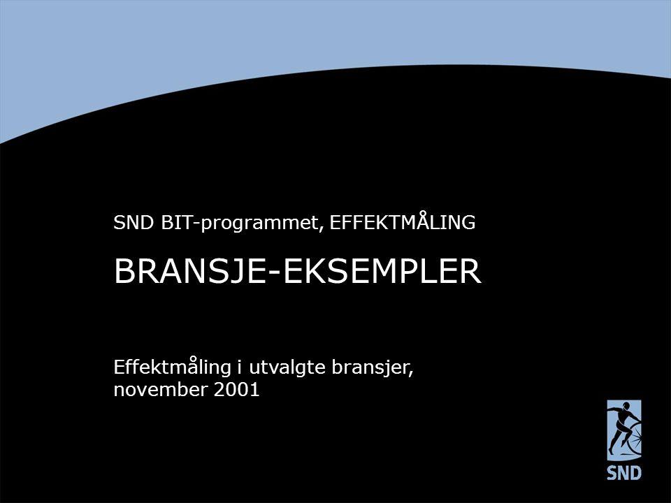 BRANSJE-EKSEMPLER SND BIT-programmet, EFFEKTMÅLING Effektmåling i utvalgte bransjer, november 2001