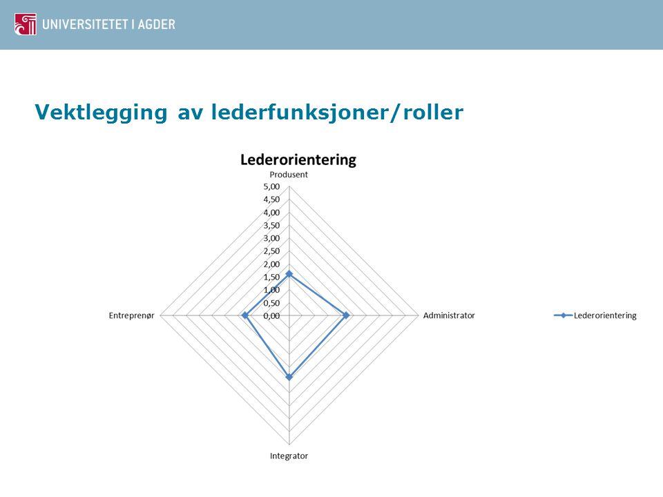 Vektlegging av lederfunksjoner/roller