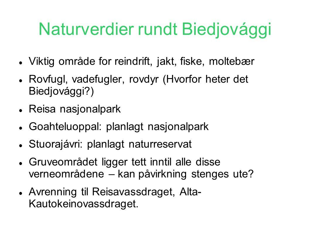 Naturverdier rundt Biedjovággi  Viktig område for reindrift, jakt, fiske, moltebær  Rovfugl, vadefugler, rovdyr (Hvorfor heter det Biedjovággi?)  R
