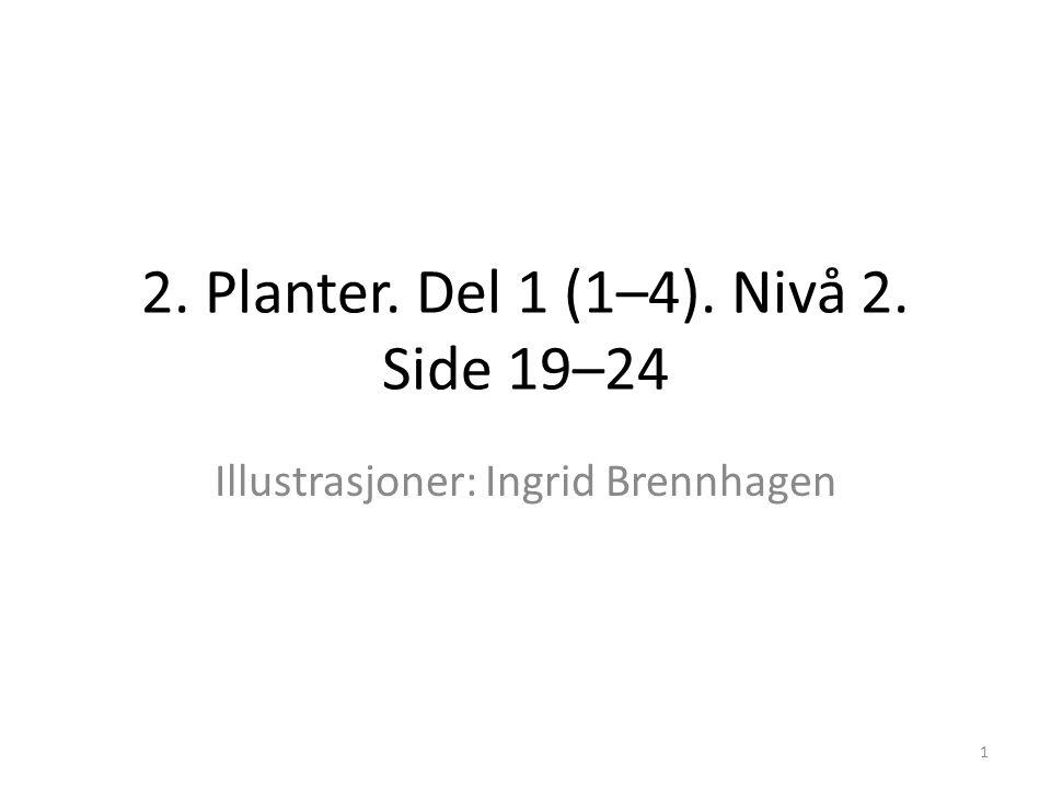 2. Planter. Del 1 (1–4). Nivå 2. Side 19–24 Illustrasjoner: Ingrid Brennhagen 1