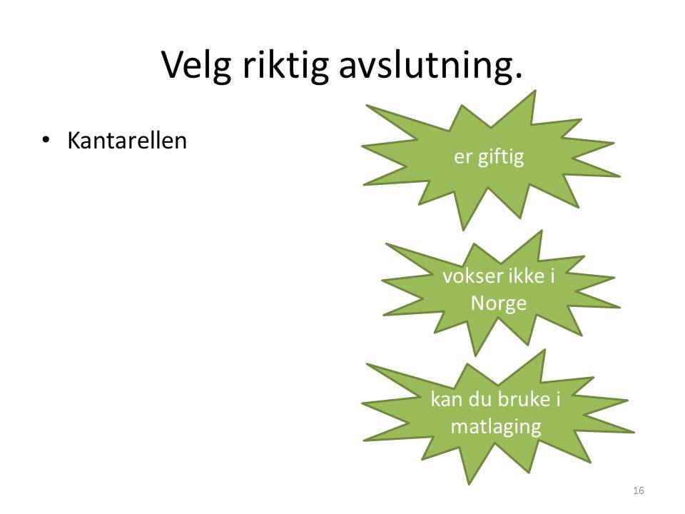 Velg riktig avslutning. • Kantarellen 16 er giftig vokser ikke i Norge kan du bruke i matlaging