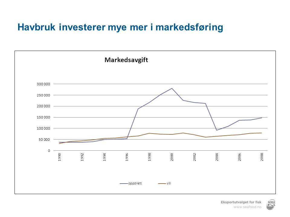 Havbruk investerer mye mer i markedsføring