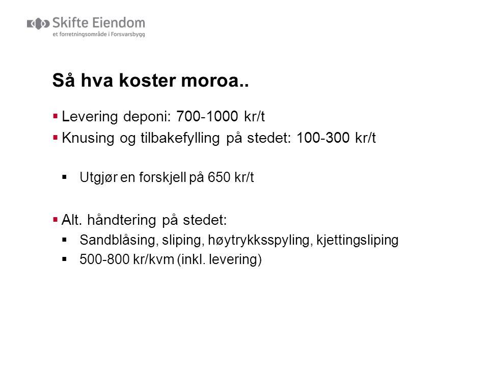 Så hva koster moroa..  Levering deponi: 700-1000 kr/t  Knusing og tilbakefylling på stedet: 100-300 kr/t  Utgjør en forskjell på 650 kr/t  Alt. hå