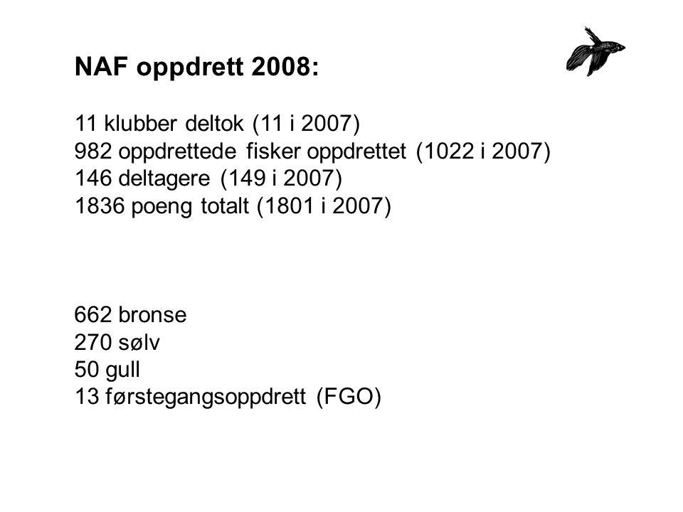 NAF oppdrett 2008: 11 klubber deltok (11 i 2007) 982 oppdrettede fisker oppdrettet (1022 i 2007) 146 deltagere (149 i 2007) 1836 poeng totalt (1801 i