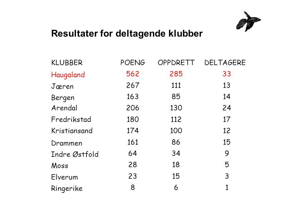 Resultater for deltagende klubber KLUBBERPOENGOPPDRETTDELTAGERE Haugaland 56228533 Jæren 26711113 Bergen 1638514 Arendal20613024 Fredrikstad18011217 K