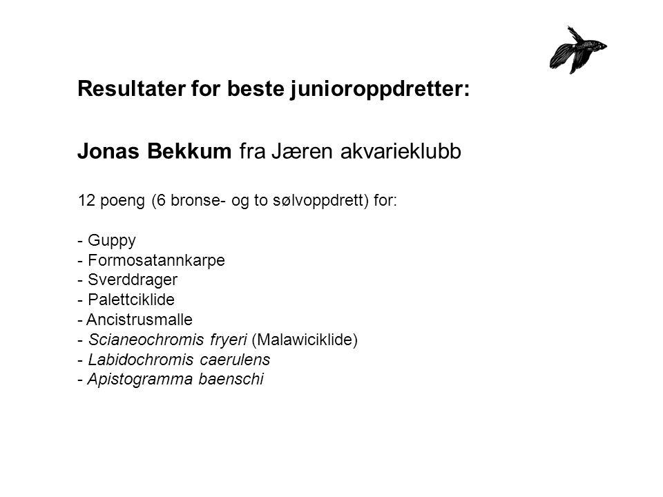 Resultater for beste junioroppdretter: Jonas Bekkum fra Jæren akvarieklubb 12 poeng (6 bronse- og to sølvoppdrett) for: - Guppy - Formosatannkarpe - S