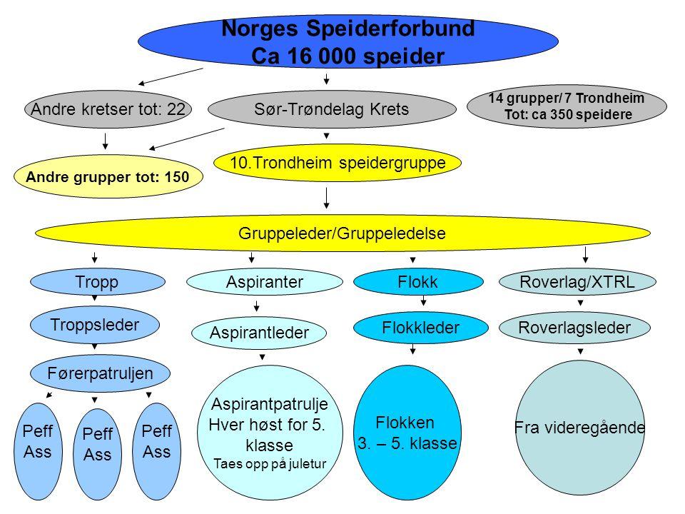Norges Speiderforbund Ca 16 000 speider Sør-Trøndelag Krets 10.Trondheim speidergruppe Andre kretser tot: 22 Andre grupper tot: 150 Gruppeleder/Gruppe