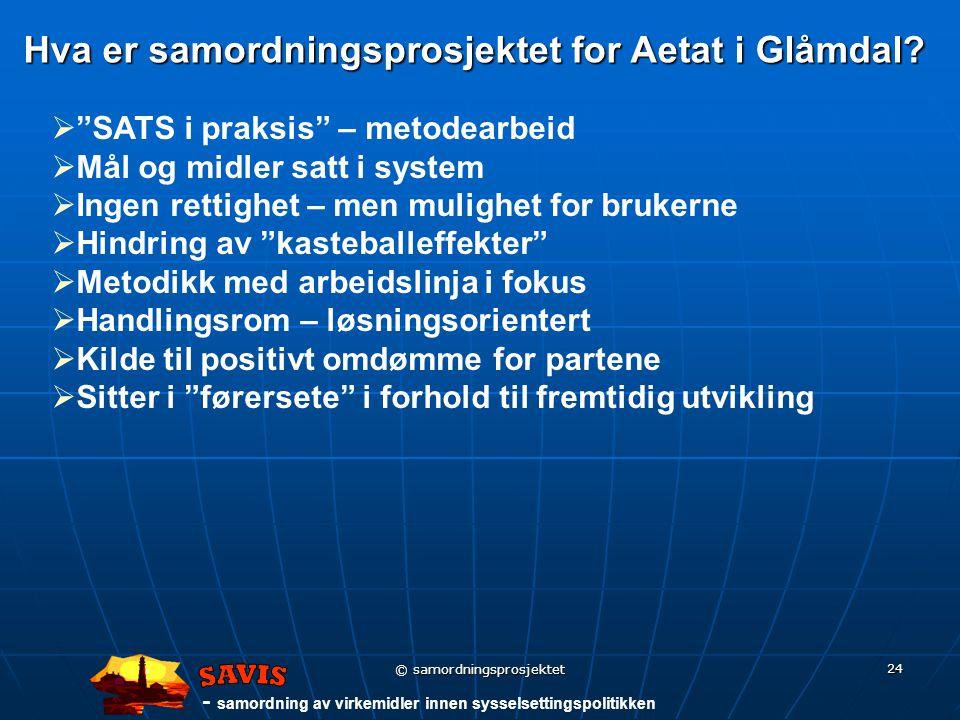 - samordning av virkemidler innen sysselsettingspolitikken © samordningsprosjektet 24 Hva er samordningsprosjektet for Aetat i Glåmdal.